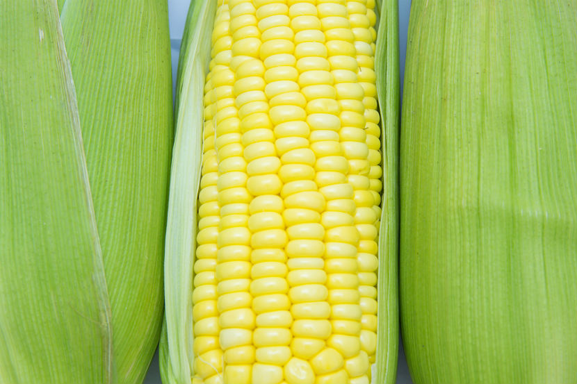 corn of cob