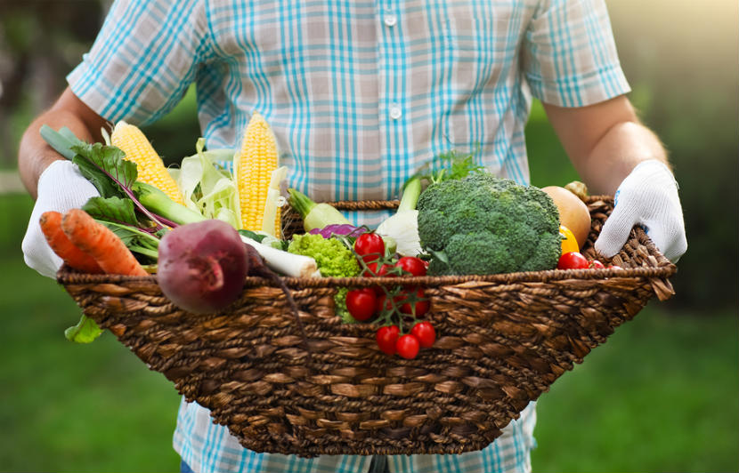 person carrying a basket of fresh vegetables
