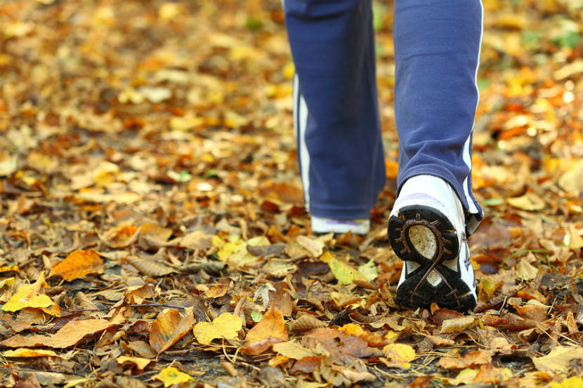 person walking in fall leaves