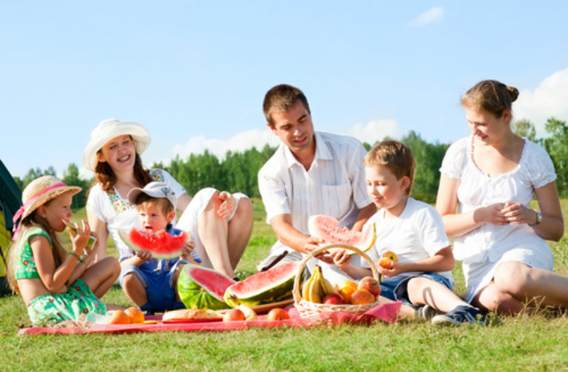 What Should I Pack in My Picnic Basket This Summer? - Unlock Food